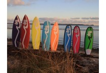 Kitesurfing Wave Boards